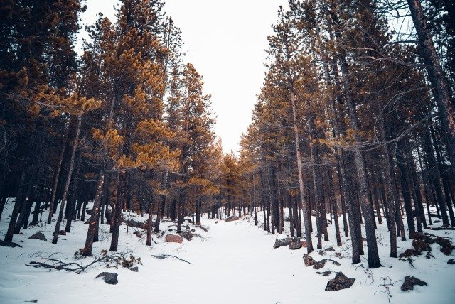 Denver, CO - DEN-2