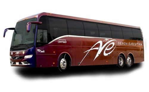 Ave Bus Schedule & Tickets